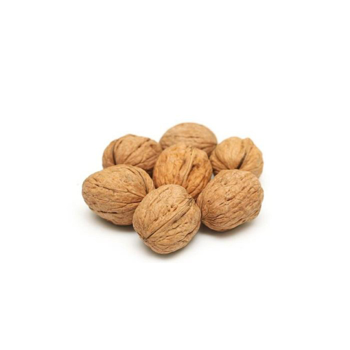 Picture of Walnut seed